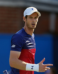 Great Britain's Andy Murray reacts during his match against Australia's Jordan Thompson during day two of the 2017 AEGON Championships at The Queen's Club, London.