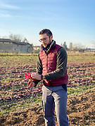 Fabio Bolzicoo with his Rosa di Gallo radicchio project