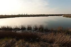 In tutto il Salento, in un'area che comprende la province di Brindisi, Taranto e Lecce, si contano 70 torri costiere, una ogni cinque chilometri circa, costruite in gran parte intorno al 1500 per potenziare la struttura difensiva dopo le sanguinose invasioni turche. A sud di Brindisi, tra Torre Cavallo e Torre Mattarella, è situato il Parco naturale Saline di Punta della Contessa. Non solo le vecchie torri delimitano il parco, ma anche due grandi insediamenti industriali, il Petrolchimico a nord e la Centrale a carbone di Cerano a sud. Tra i due poli un'oasi..... fra campi coltivati, una zona umida e litorale sabbioso. L'area è considerata di elevato valore naturalistico per la presenza di diverse specie di uccelli nidificanti e contingenti migratori, principalmente di specie acquatiche, che transitano sull'Adriatico orientale. Nel cuore del Parco vive Anna, che gestisce un'azienda agricola di proprietà della sua famiglia da tre generazioni. Anna collabora anche nella gestione del Parco, ma da qualche anno deve affrontare da sola un nuovo problema: la presenza di lepri che si sono riversate nell'oasi per sfuggire ai cacciatori delle zone limitrofe. Le lepri si riproducono tre volte l'anno e si nutrono delle coltivazioni di Anna aggredendo le gemme di carciofi, insalata e tutto ciò che la famiglia coltiva da sempre. Questo problema si aggiunge a quello che incombe dopo gli anni sessanta: la minaccia dell'inquinamento industriale. Nonostante sia stata disposta la protezione come sito di interesse nazionale, i fondi destinati alla salvaguardia del parco risultano insufficienti. ..