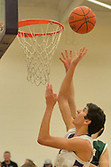 Elyria Catholic at Avon boy varsity basketball on February 6, 2015. Images © David Richard and may not be copied, posted, published or printed without permission.