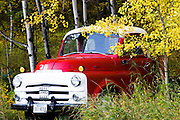 Old Montana truck with fall colors near the Rocky Mountain Front.