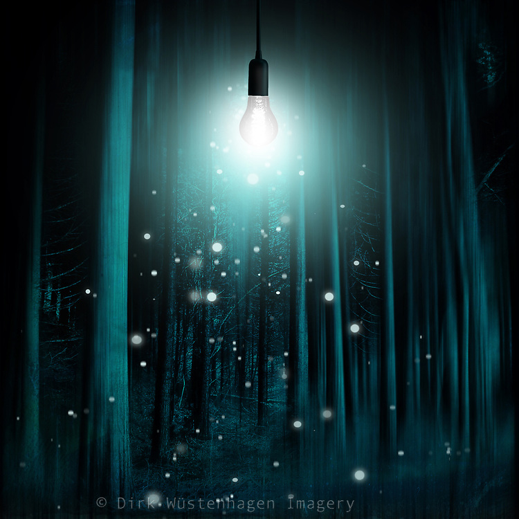 Abstract eerie forest illuminated by a light bulb<br /> S6 products: https://bit.ly/2KkpZhR<br /> Redbubble : https://rdbl.co/2r9QM8b