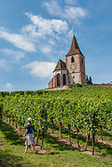The town of Hunawihr on the Route des Vins (Wine Route) in Alsace, France.