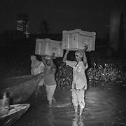 4:40am. The cold boxes containing the ice-packs are are loaded onto boats that take the vaccine to a sub depots to be distributed to vaccinator teams and reach more than two hudred villages on the flood plains of the Kosi river. Kusheshwar Asthan east, Bihar.
