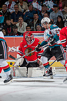 KELOWNA, CANADA - MAY 1: Adin Hill #31 of Portland Winterhawks defends the net against the Kelowna Rockets during game 5 of the Western Conference Final on May 1, 2015 at Prospera Place in Kelowna, British Columbia, Canada.  (Photo by Marissa Baecker/Getty Images)  *** Local Caption *** Adin Hill;