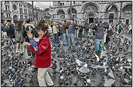 Day Tripper - Venice Pigeons is a street selective colour photography series by photographer Paul Williams taken on 26th September 2007 of tourists feeding pigeons in St Marks Square .<br /> <br /> Visit our REPORTAGE & STREET PEOPLE PHOTO ART PRINT COLLECTIONS for more wall art photos to browse https://funkystock.photoshelter.com/gallery-collection/People-Photo-art-Prints-by-Photographer-Paul-Williams/C0000g1LA1LacMD8