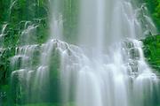Proxy Falls, Willamette National Forest, Oregon
