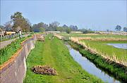 Nederland, Hasselt, 23-4-2015De Stenen Dijk, de enig overgebleven stenen waterkering van ons land. Als zeewering tegen het Zwarte Water en de Zuiderzee. Gemetseld in verschillende steensoorten en lagen.Buitendijks ligt de ijsbaan van het stadje.Hasselt is een stad in de gemeente Zwartewaterland in de provincie Overijssel. Hasselt ligt aan het Zwarte Water en de Dedemsvaart. De stad ligt aan de zuidgrens van de landstreek de Kop van Overijssel en aan de noordgrens van de landstreek Salland. Op 1 november 2014 had Hasselt 6964 inwoners. Het is sinds 2001 het bestuurlijk centrum van de gemeente Zwartewaterland.FOTO: FLIP FRANSSEN/ HOLLANDSE HOOGTE