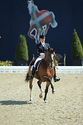Johansen Sidsel M, (DEN), Alibi D<br /> Qualification Grand Prix Special<br /> Horses & Dreams meets Denmark - Hagen 2016<br /> © Hippo Foto - Stefan Lafrentz