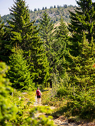 Rear view of a women walking towards Vosges mountain at Hilsenfirst, France