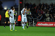 Swansea's Ashley Williams can't bear to look as Stoke city celebrate their 2nd goal. Barclays Premier league, Swansea city v Stoke city at the Liberty Stadium in Swansea, South Wales on Sunday 10th November 2013. pic by Andrew Orchard, Andrew Orchard sports photography,