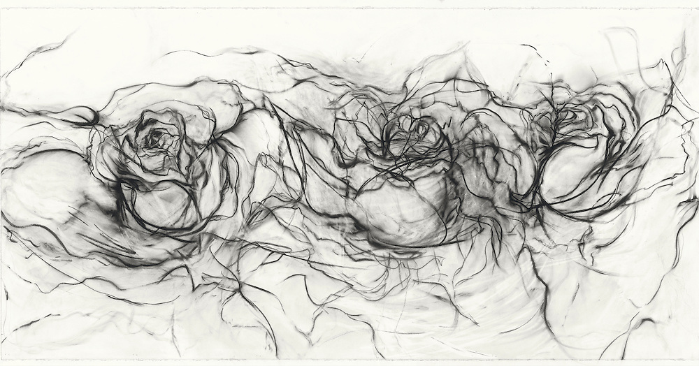 One spring I had a particularly extraordinary profusion of flowers, especially roses. I took some photographs that I put up in my studio to keep me company. They were big red roses. I started sketching in black to form the shapes. Then the sketch turned into this organic dance around the paper with the roses connecting with each other and the surrounding space. Somehow, without color, they were the big red roses from my garden. Materials: Pastel on museum-grade archival quality Rives paper