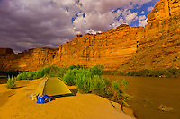 Camping on a small island, Meander Canyon section of the Colorado River in Canyonlands National Park, Utah, USA.