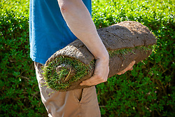 Carrying rolls of turf