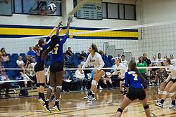Volleyball vs. STLCOP
