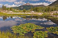 Reflectons of 12,968 ft. Engineer Mountain in Scout Lake.  San Juan Mountains, Colorado, USA.