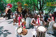 A group of drummers at the great elephant festival in Karela, India, Kerala is a state on the tropical coast of south west India
