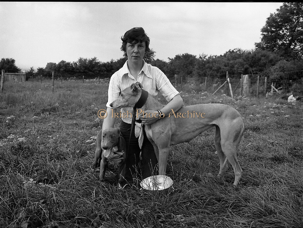 Greyhound and Pups.    (M81)..1979..12.07.1979..07.12.1979..12th July 1979..Pictured at Saggart, Co Dublin,was a champion greyhound and her pups. The dogs were reared using Spratts Dog Foods..The greyhound and her handler pose for pictures with one of the pups.