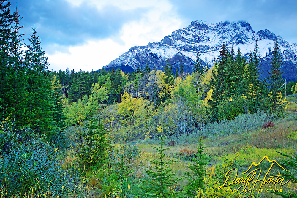 Cascade Mountain and autumn color in Banff National Park