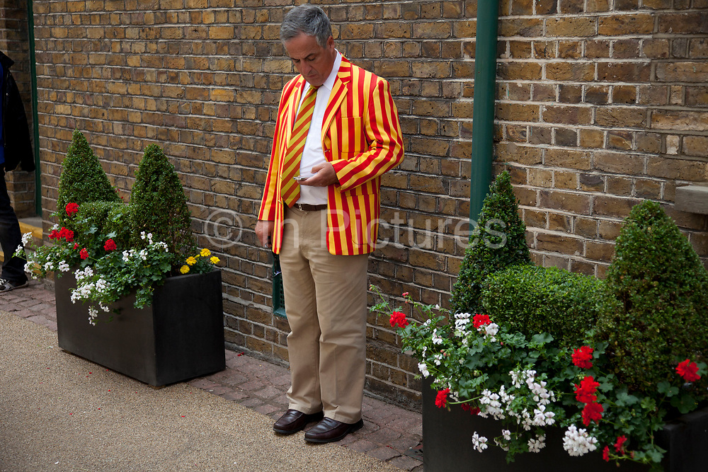 Man at Lords Cricket Ground checking his cell phone messages and wearing MCC coloured blazer and tie. Colours also affectionately known as egg and bacon.