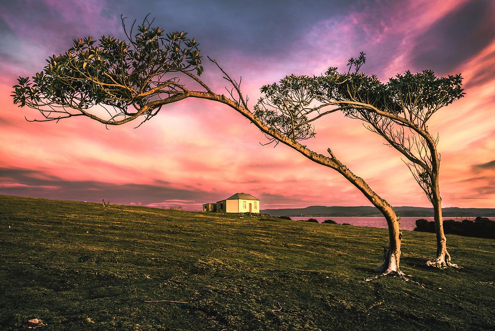 Sunrise in Darlington,  an old convict town at Tasmanian Maria Island. Can you spot the kangaroos?