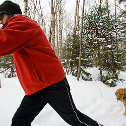 A man cross country skiing with his dog on the Catamount Trail in Stowe, Vermont.