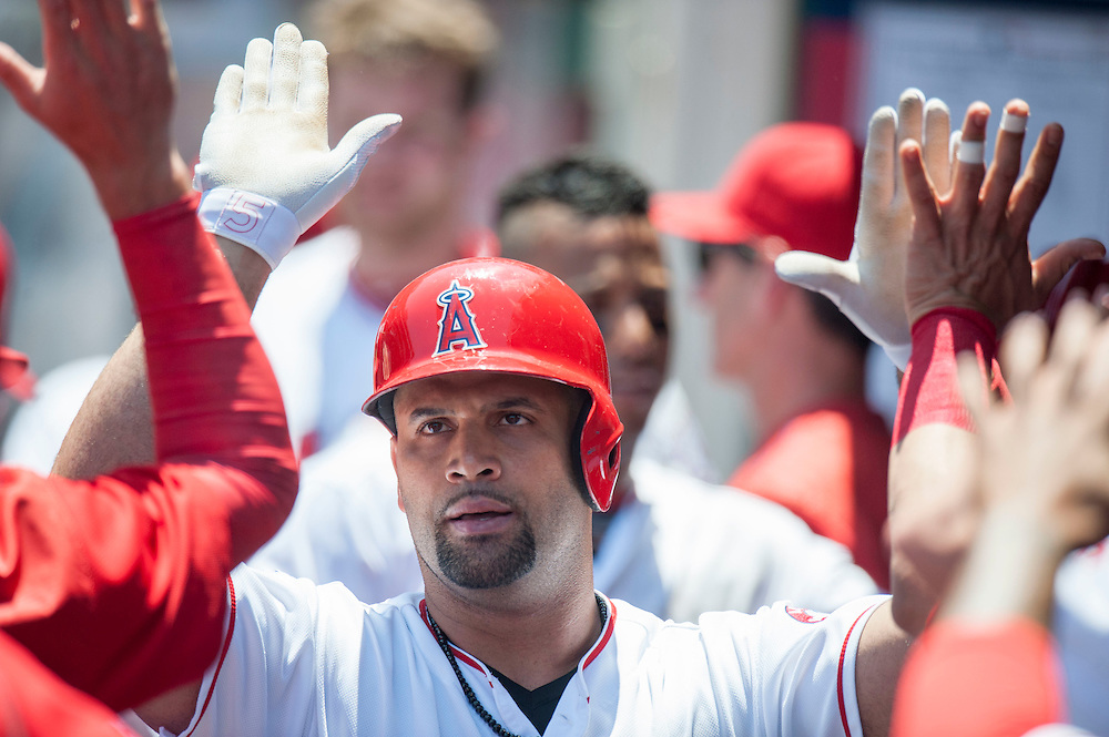 The Angels' Albert Pujols celebrates in the dugout after his two-run home run in the first inning against the Chicago White Sox at Angel Stadium on Sunday.<br /> <br /> ///ADDITIONAL INFO:   <br /> <br /> angels.0718.kjs  ---  Photo by KEVIN SULLIVAN / Orange County Register  -- 7/17/16<br /> <br /> The Los Angeles Angels take on the Chicago White Sox at Angel Stadium.