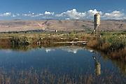 Fish pond at Kibbutz kfar Giladi