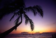 Sunset with palm treeSunset, cloud, sky, carribean, hawaii, tahiti, maui, oahu, fiji, cook islands, bora bora, moorea, huahine, kauai, mexico, kauai<br />