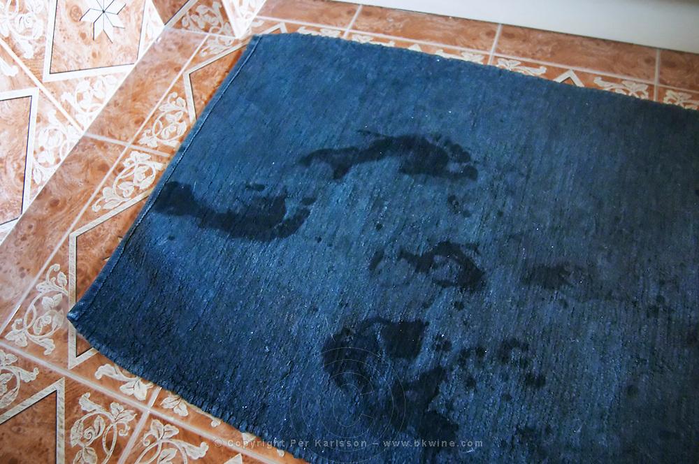 In the bathroom, wet foot steps on the blue bathroom mat outside the shower cabin Clos des Iles Le Brusc Six Fours Cote d'Azur Var France