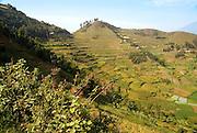 Uganda, Lake Bunyonyi Landscape