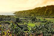 Wailua Valley, Hana Coast, Maui, hawaii