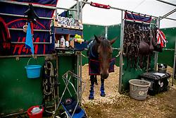 Atmosphere stables<br /> Brussels Stephex Masters<br /> © Hippo Foto - Sharon Vandeput<br /> 26/08/21