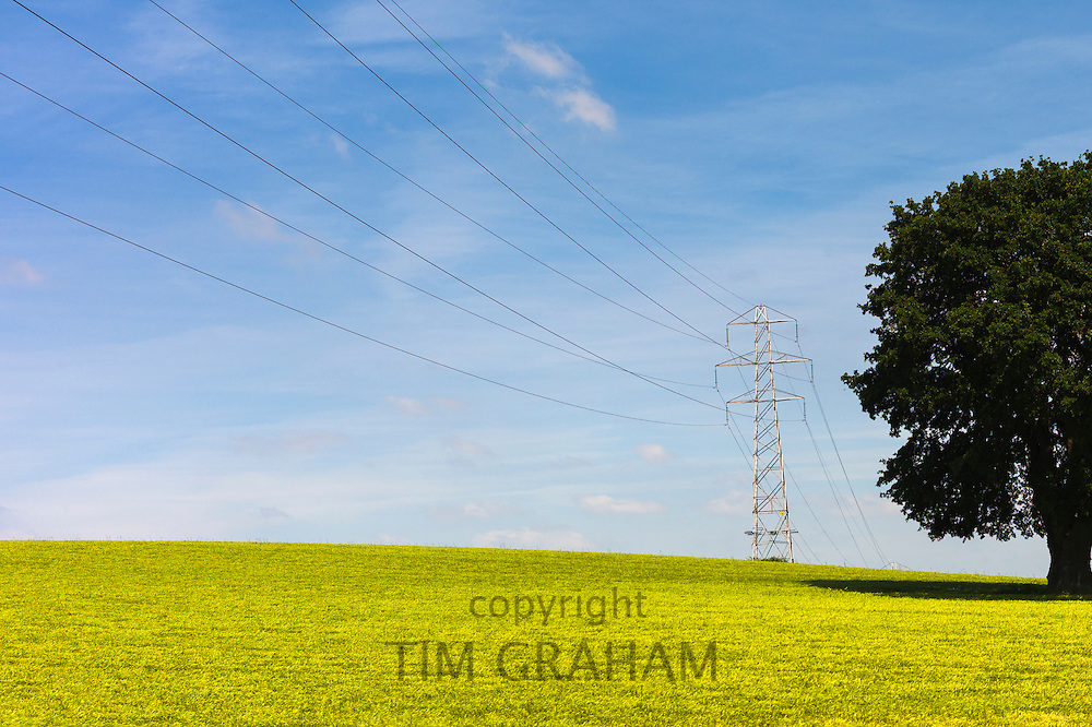 Electricity pylon and power cables in South Devon, England, UK