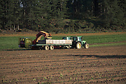 Potato harvest, Wantisden, Suffolk farming landscape scenery, East Anglia, England