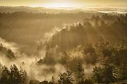 Winter Sunrise over the California Coast Range in Sonoma County near Occidental, California
