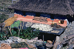 Drying Foods On Roof