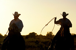 Texas father and son cowboys roping