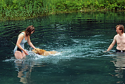Golden Retriever Swimming To 2nd Person