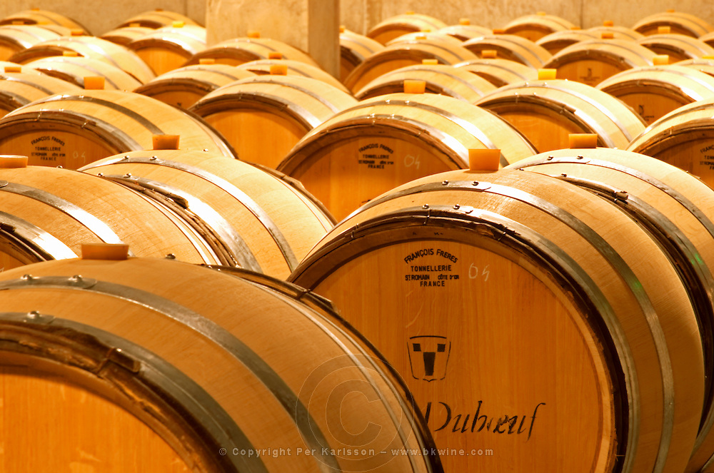 New oak barrels at the Georges Duboeuf winery in Romaneche-Thorins, Beaujolais, Bourgogne