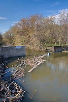 Diversion dam on Salt Creek, Cook County Forest Preserve Illinois