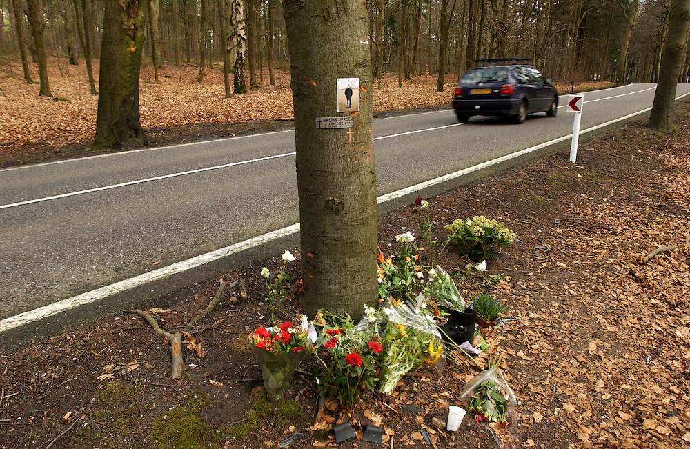 Nederland, Austerlitz, 21-03-2002..Monumentje voor verkeersslachtoffer, dode in het verkeer. Bomen langs een tweebaans weg getuigen door schade en herdenkingsplaatjes aan de doden die hier zijn gevallen. De bomen staan in een flauwe bocht van een weg waar het snachts erg donker is en waar hard gereden word. ..Foto (c) Michiel Wijnbergh/Hollandse Hoogte
