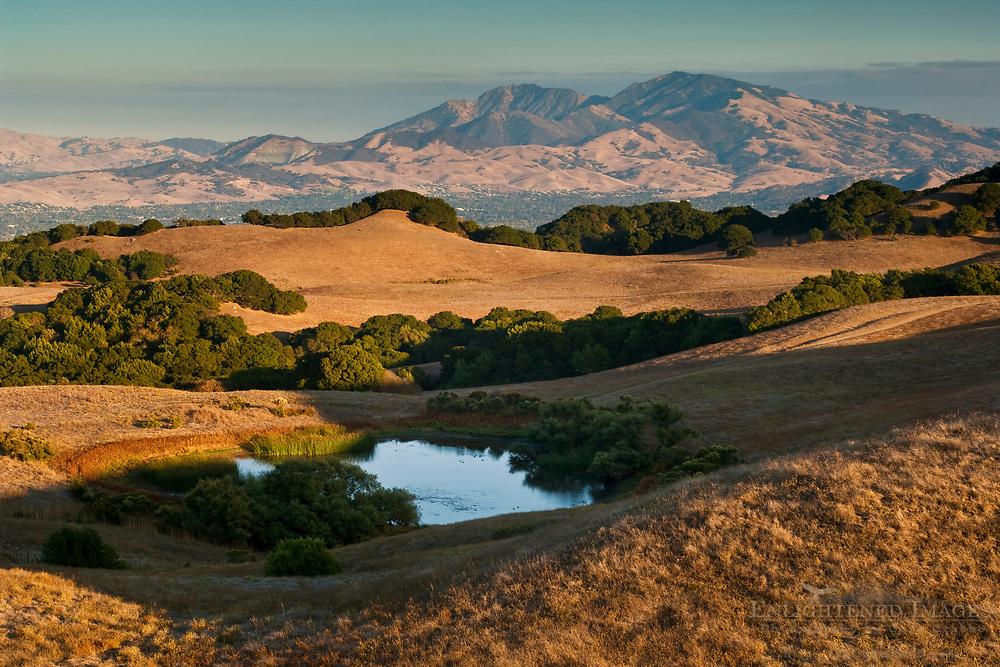 Mount Diablo seen from Briones Regional Park in summer, Contra Costa County, California