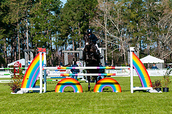 March 22, 2019 - Raeford, North Carolina, US - March 22, 2019 - Raeford, N.C., USA - PHILLIP DUTTON of the United States riding FERNHILL PICK POCKET competes in the CCI3-S show jumping division at the sixth annual Cloud 11-Gavilan North LLC Carolina International CCI and Horse Trial, at Carolina Horse Park. The Carolina International CCI and Horse Trial is one of North AmericaÃ•s premier eventing competitions for national and international eventing combinations, hosting International competition at the CCI2*-S through CCI4*-S levels and National levels of Training through Advanced. (Credit Image: © Timothy L. Hale/ZUMA Wire)