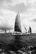 Round Europe Yacht Race.   (R61)..1987..25.07.1987..07.25.1987..25th July 1987..President Patrick Hillery started the Round Europe Yacht Race which began at Dun Laoghaire today...Image shows yachts under sail as the set off on the first leg of the round Europe race to Lorient, France.