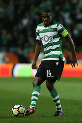 February 11, 2018 - Lisbon, Lisboa, Portugal - Sporting CP midfielder William Carvalho from Portugal  during the Premier League 2017/18 match between Sporting CP and CD Feirense at Estadio Jose Alvalade on February 11, 2018 in Lisbon, Portugal. (Credit Image: © Dpi/NurPhoto via ZUMA Press)