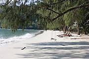 Deserted beach scene