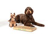 Nibble & Nosh dog treats