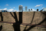 Shadow blends into the Walkie Talkie building in an urban scene with a natural element of a tree becoming a skyscraper. London, England, UK. (photo by Mike Kemp/In Pictures via Getty Images)