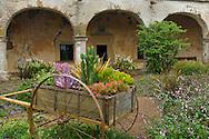 Garden detail and old stone walls at Mission San Juan Capistrano, San Juan Capistrano, California